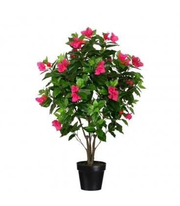 Planta buganvilla verde-fucsia 60 x 60 x 100 cm