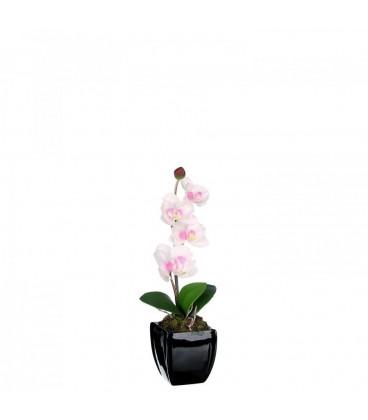 Maceta orquídea blanco