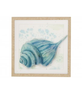 Cuadro caracola azul 42x42 cm c/marco