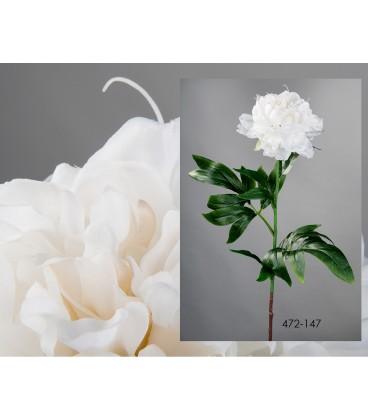 Peonía blanca 85 cm