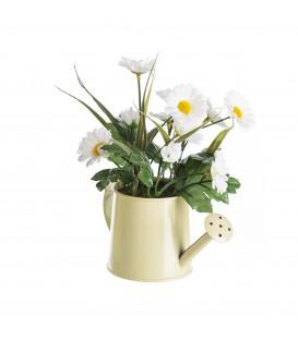 Planta margarita 20x17x9 cm