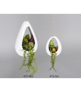 Colgante maceta plantas grasas