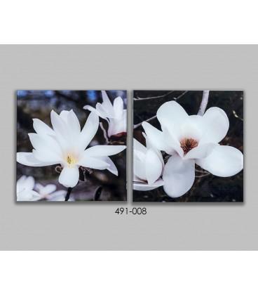 S/2 Cuadros cristal Flores 30x30 cm