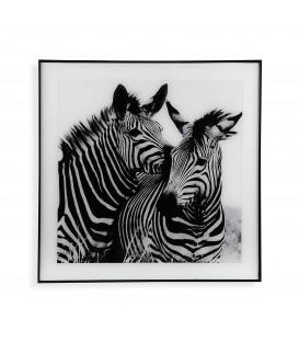 Cuadro cristal Cebras 50x50 cm