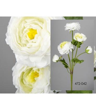 Ranunculus blanco 64 cm
